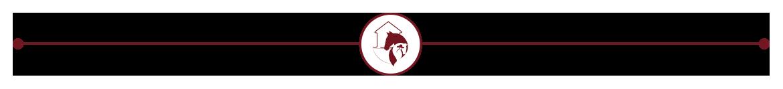 Agriturismo la Contessa Quarter Horse Gubbio - Linea con logo al centro